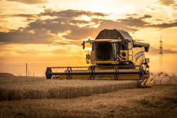 Mähdrescher erntet auf Getreidefeld