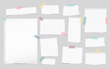 White lined note, notebook paper pieces with torn edges stuck on squared gray backgroud. Vector illustration.