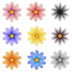 Pattern flower five petal set