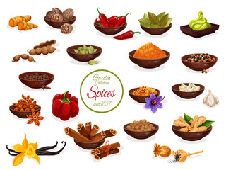 Spice poster with set of condiment and seasoning