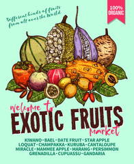 Exotic fruits sketch vector poster for farm market