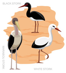 Bird Stork Set Cartoon Vector Illustration