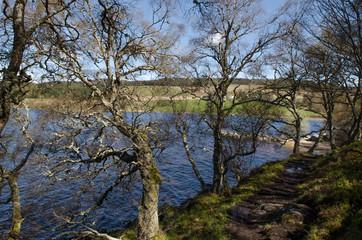 Scottish landscape. Scotland, Great Britain