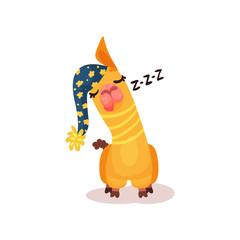 Funny llama alpaca cartoon character sleeping vector Illustration on a white background