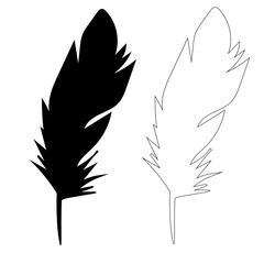 bird feather, outline