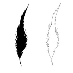 vector isolated silhouette feather bird