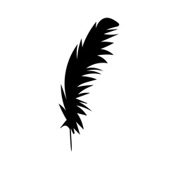 vector, isolated black silhouette of bird feathers, one