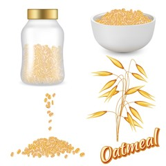 Oatmeal set vector realistic illustration