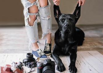 Hipster woman lags near digital cameras with a Labrador,stilllife,concept