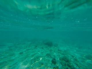 sea bottom. Calm underwater scene with copy space