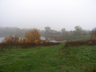 Autumn landscape with trees, river, meadow.