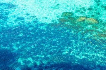 Comino Island, Malata