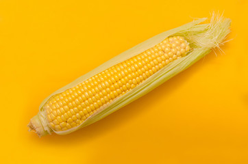 Bright ripe yellow corn on a yellow background in the style of pop art.