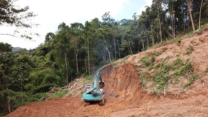 Deforestation. Destruction of Borneo rain forest for palm oil industry.