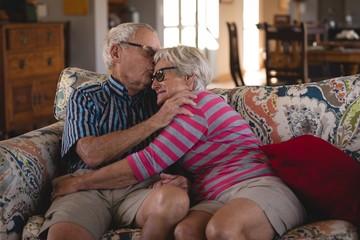 Romanced senior couple sitting on sofa