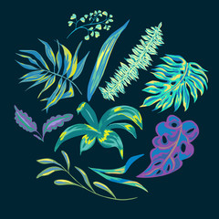 Vector summer tropical leaves, decorative set