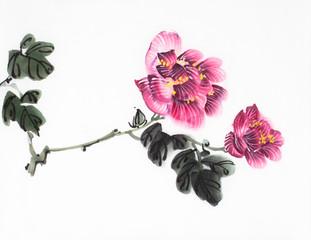 bright hibiscus flower
