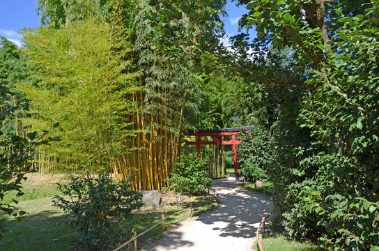 Bambouseraie garden in Anduze city
