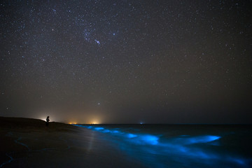 Bioluminescence in the Ocean, Chabahar, Sistan and Baluchistan, Iran