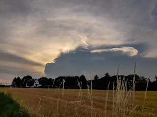 Evening sky with storm thunderstorm cloud behind cornfield