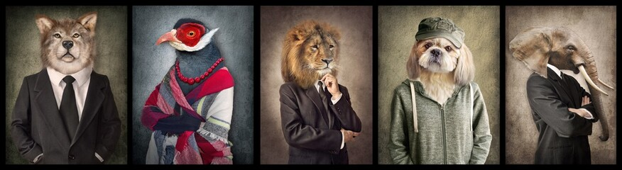 Fotorollo Retro Animals in clothes. Concept graphic in vintage style. Wolf, Bird, Lion, Dog, Elephant.