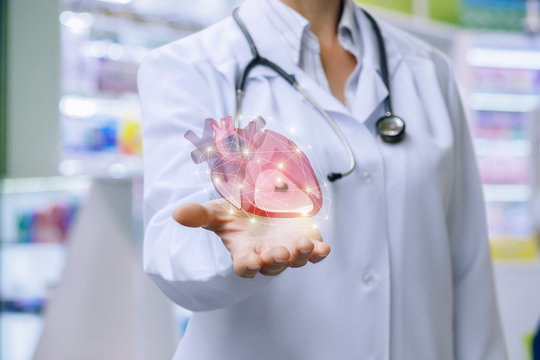 Doctor shows heart in his hand .