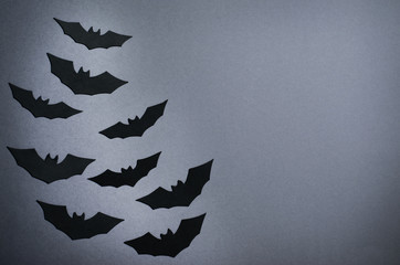 Black Bats on Dark Background, Halloween Symbol