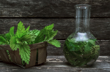 Nettle tincture. Naturopathy. Herbal medicine.