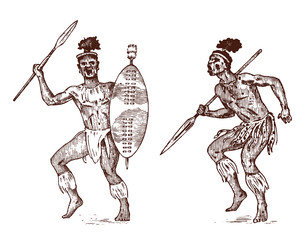African tribes, Aborigines in traditional costumes. Australian Warlike black native man with spears and weapons. Engraved hand drawn old monochrome Vintage sketch for label.