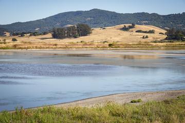 Wetlands bird refuge area