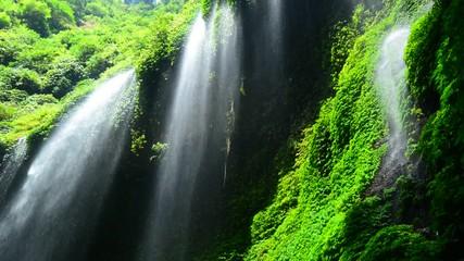 Wall Mural - Madakaripura Waterfall is the tallest waterfall in Java and the second tallest waterfall in Indonesia.