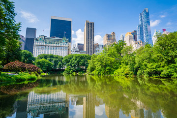 Wall Mural - The Pond, in Central Park, Manhattan, New York City