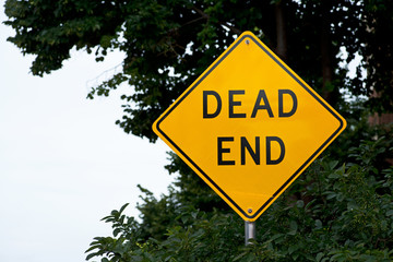 Dead end traffic warning sign in front of a forest