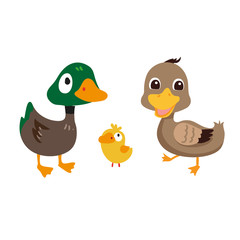 duck character vector design