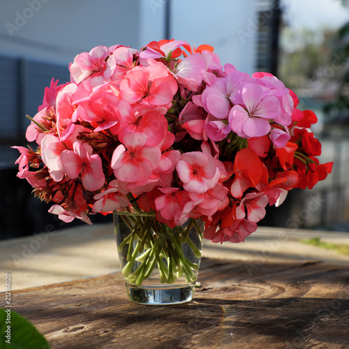 Vase Of Flower Pink Geranium Bouquet Stock Photo And Royalty Free