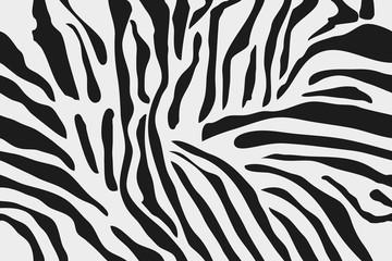 Seamless Zebra Skin Pattern, Background Texture