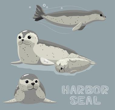 Harbor Seal Cartoon Vector Illustration
