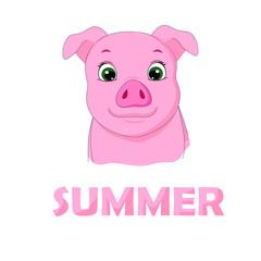 vector illustration summer pig
