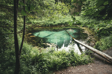 Saula cold pure fresh water blue spring, Estonia, Europe. Beautiful natural wonder in the woods by the hiking trail. Believed to be ancient offering site. Natural wonder.