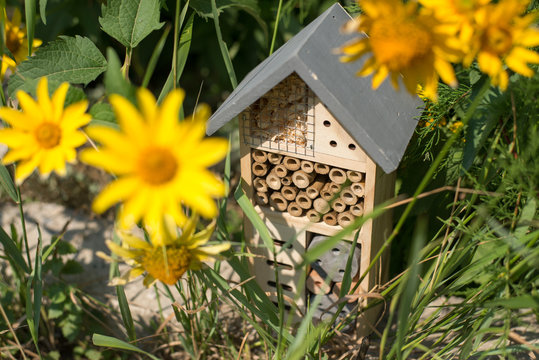 green technology. insect hotel house in garden