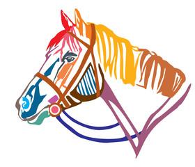 Colorful decorative portrait of horse in profile vector illustration