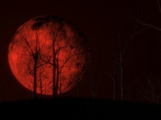 blood moon scene with dark woods. 3d illustration