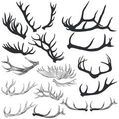 Big collection of vector deer horns for design