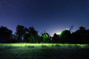 night landscape summer starry sky / outside the city night landscape