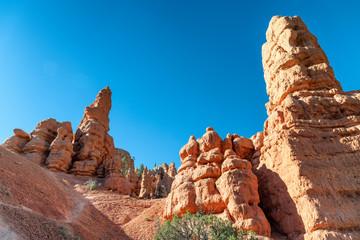 Fototapete - Red Canyon rocks, Utah, USA