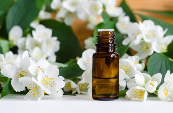 Small bottle of essential jasmine oil. Jasmine blossom flowers background. Copy space.