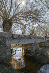 Landscape of old stone bridge over a river surrounded by trees