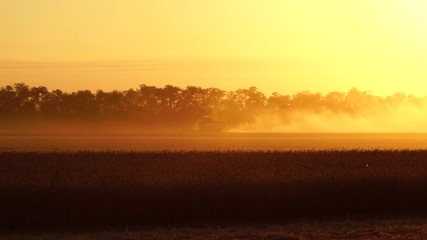 Etiqueta Engomada - Combine harvester harvests grain in the field at sunset. Behind him is a cloud of dust. Slow motion