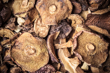 Dry mushrooms as food background