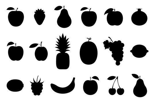 Fruits, Monochrome style. isolated on white background